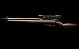 33 Altes Gewehr
